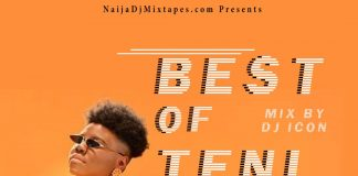 dj icon best of teni